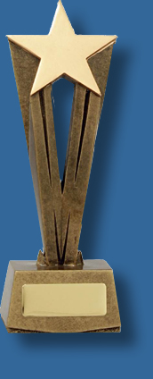 Star Award business trophy