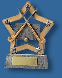 Hockey trophy gold star