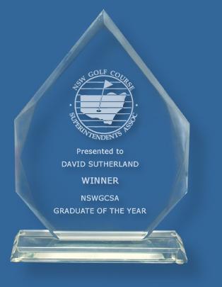 Clear Glass Arrow Award