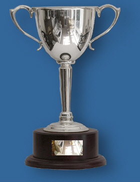 Top Quality large Silver Cup