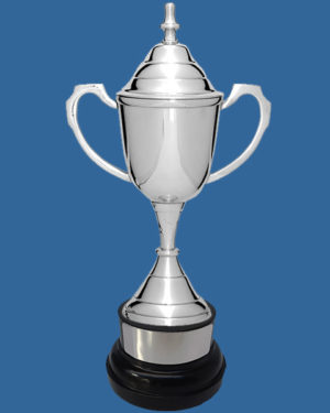 Silver Plated Cup on Plastic Base
