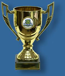 School Academic Cup Trophy