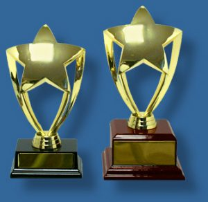 Star Business Trophies on timber bases