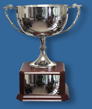 stainless steel silver cup