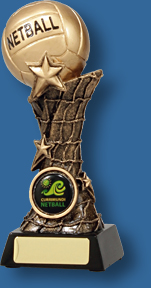 Tall gold netball trophy