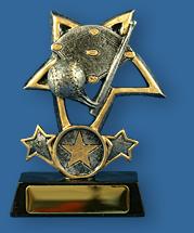 Baseball collage and gold star award