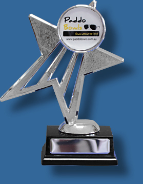 Silver Star Trophy with 50mm Insert, shiny plastic figure on dark rosewood timber base