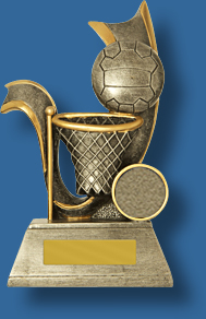 Netball ring and ball trophy