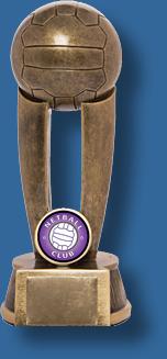 Tall netball award
