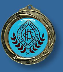 Gold medal for school