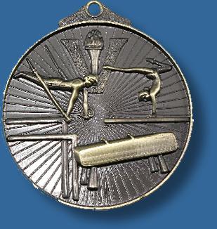 Gymnastics medal sunraysia