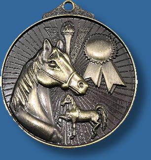 Equestrian medal Sunraysia