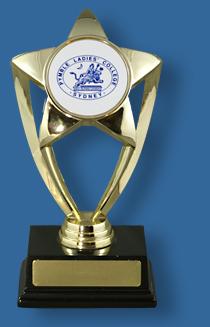 Gold star award with school logo