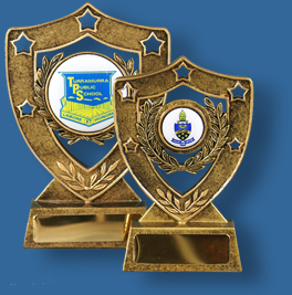 Gold shield awards with school logo