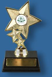Star award with school logo