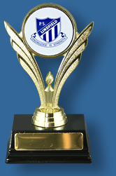 Gold victory trophy with school logo