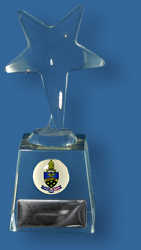 Free standing star award with school logo