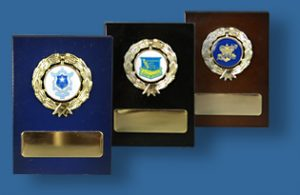 Timber fress standing awards with school logo