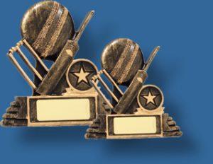 Bronze Cricket collage award