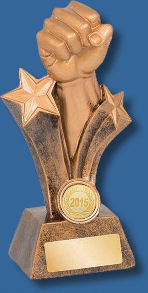 Gold fist Martial Arts trophy