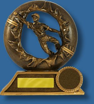 Bronze breahthrough cricket fielding trophy