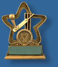 Gold star trophy with Cricket collage
