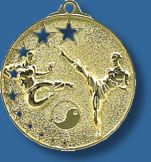 Martial Arts medal bright star