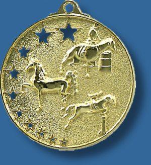 Equestrian medal bright star