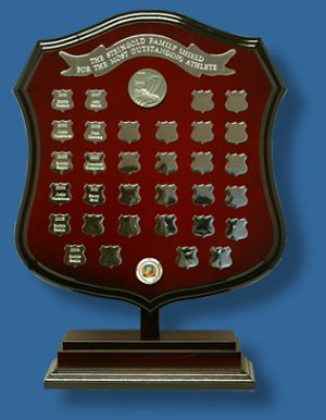 Large50cm rosewood shield on stand