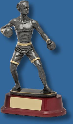 Silver Kickboxing trophy