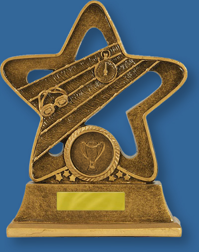Bronze generic resin swimming trophy with stopwatch, goggles and lane ropes detail.