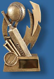 Gold Cricket collage award