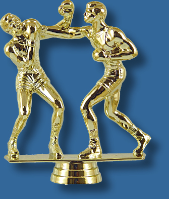 Boxing trophy pair