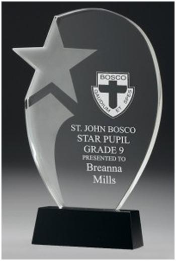 Star crystal corporate award