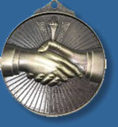 Business Medal for business page categories