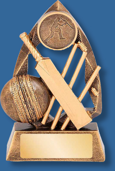 Gold cricket collage trophy
