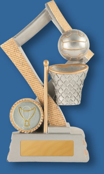 Netball award diamond series