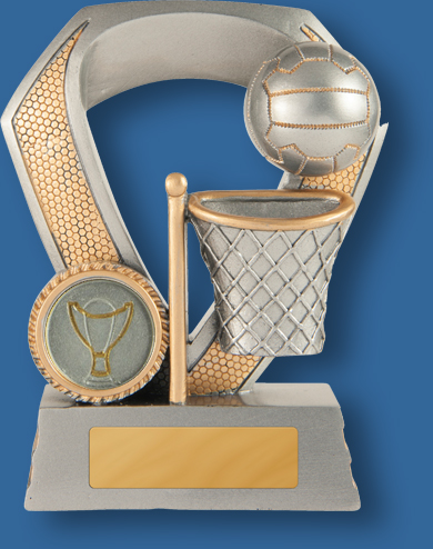 Gold evaton netball shield trophy