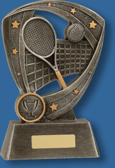 Tennis Pro series award