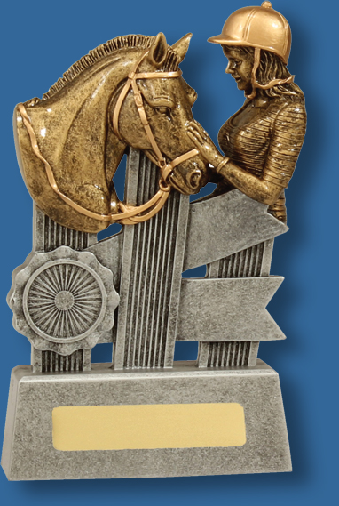 Silver ribbon horse head trophy
