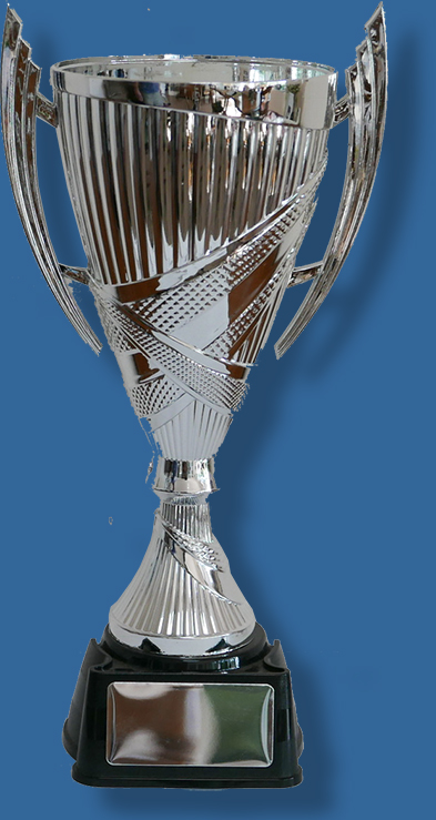 Plastic Silver Trophy cup