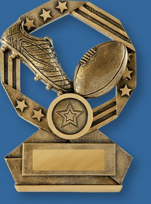 Australian Rules Trophies Bronze Aussie Series