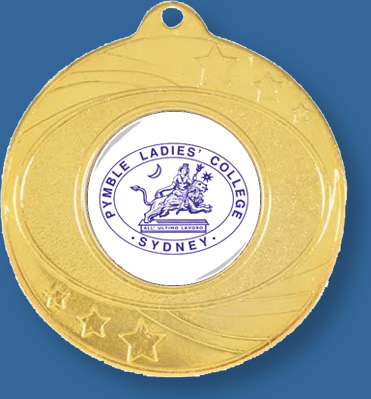Silver School Medals with neck ribbon. Personalised logos.