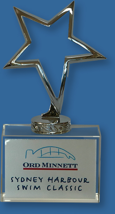 Crystal Trophy. Metal Star on Crystal Base