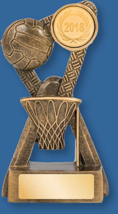 Netball Trophy Stinger Generic