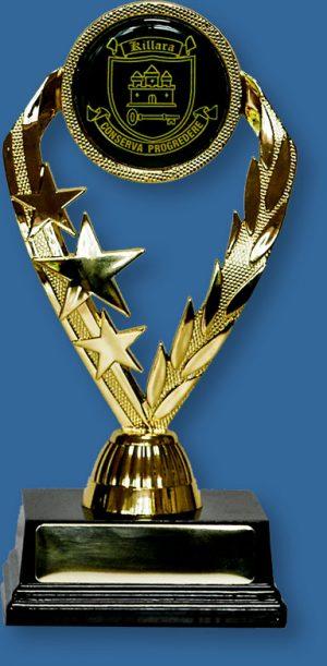 School Trophy with custom Insert black base and 50mm custom cres