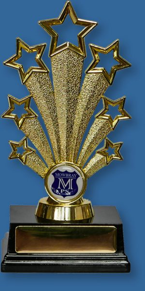 School Trophy with school crest Gold plastic stand on base with 25mm custom insert