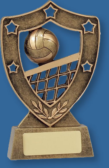 Volleyball Trophy Bronze Shield Series