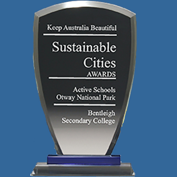 Glass Trophy. Blue Shield Glass Award