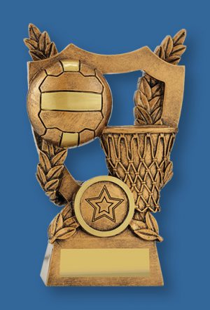 Generic netball trophy with gold shield, ball on gold base